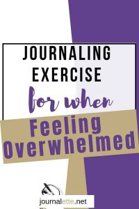 image of text box journaling exercise for when feeling overwhelmed