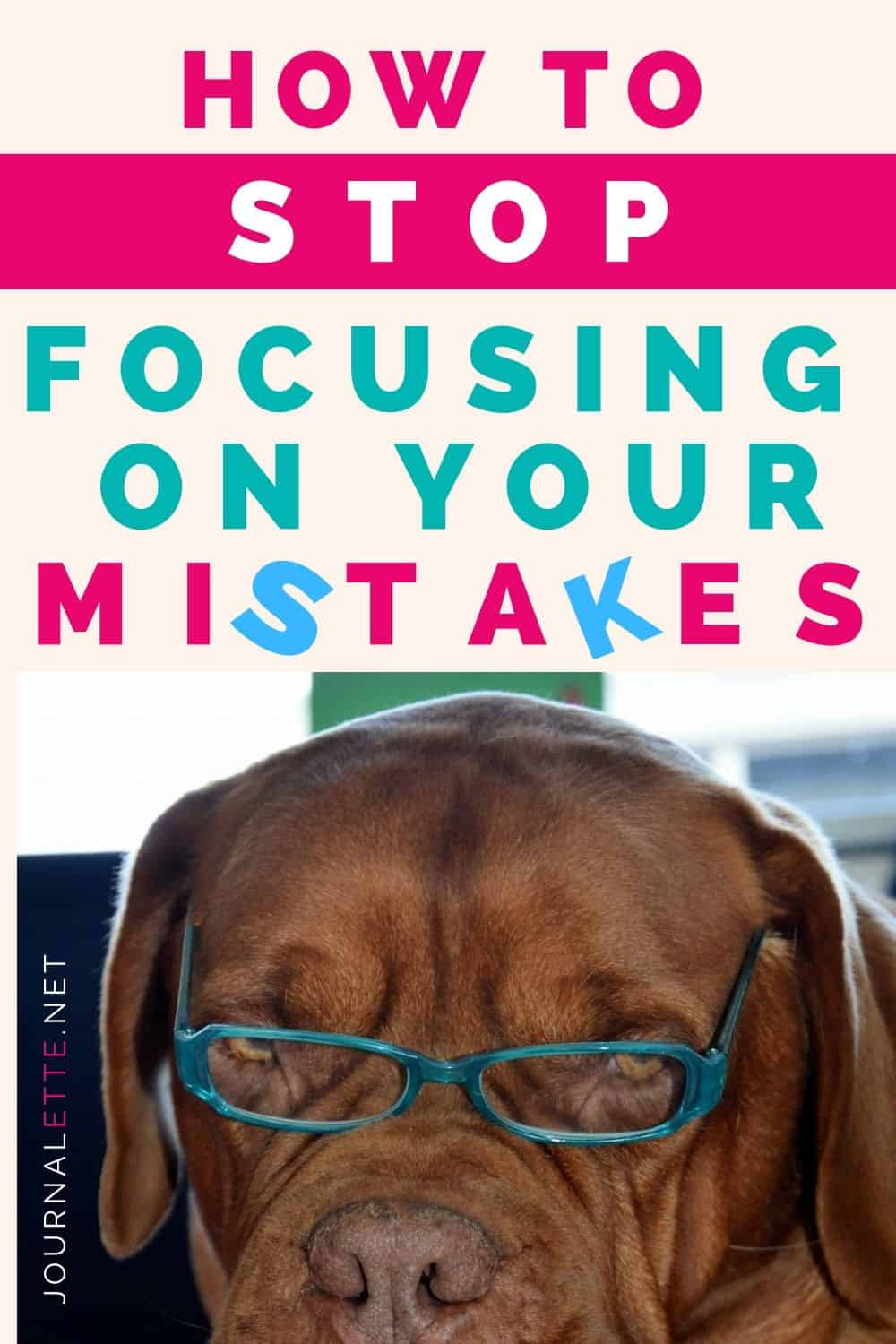 image of dog with text above how to stop focusing on your mistakes